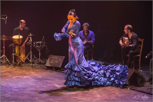 flamenco-vivo-lo-esencial